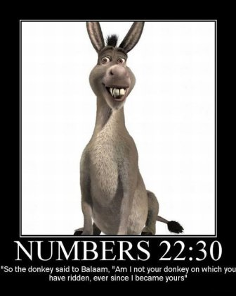 The-Bible-Talking-Donkey-atheism-gnu-new-funny-lol-positive-strong-agnosticism-theism-religion